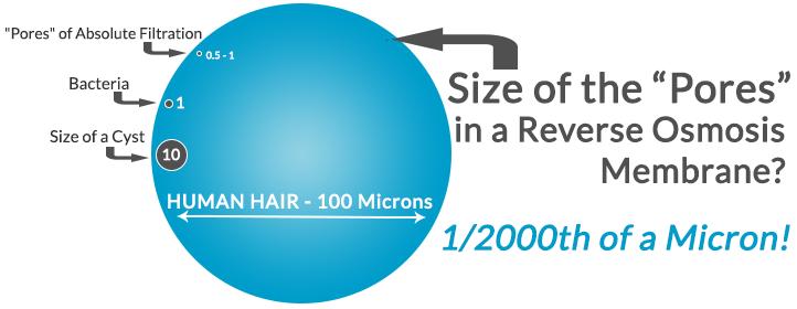 Reverse Osmosis Pore Size